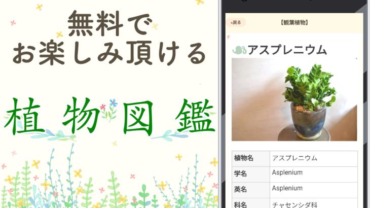 植物図鑑 【無料アプリ】