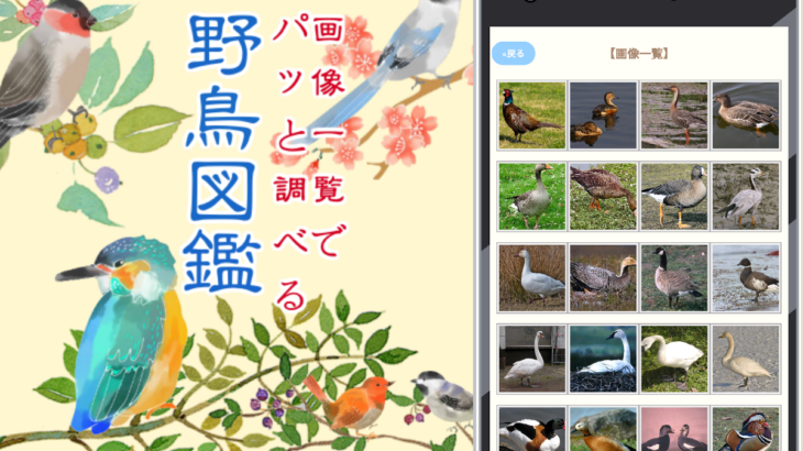 野鳥図鑑 無料